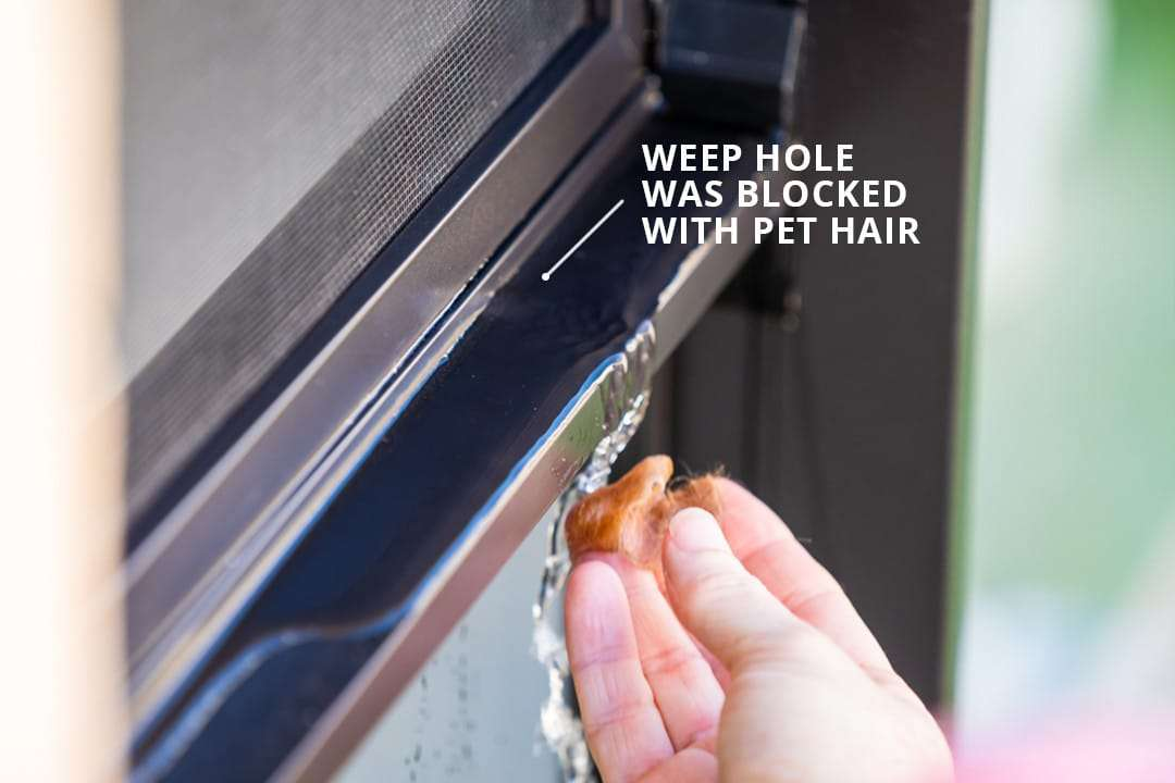 Windows and door tracks should be cleaned regularly to avoid blocking the drainage system with pet hair, dirt, leaf litter and other obstructions.